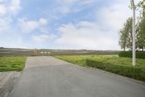 36-Assen-Rosa-Spierweg-37