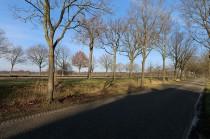 23-Havelte-Meenteweg-5